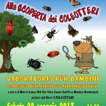 alla scoperta dei coleotteri